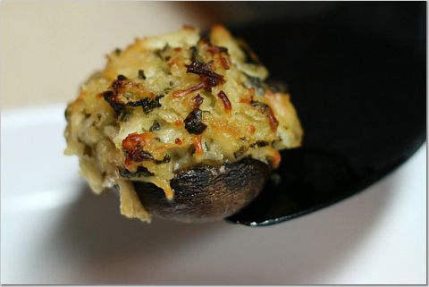 mushrooms41.jpg