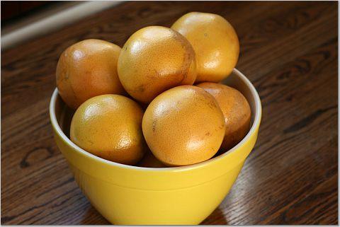 grapefruitsorbet5.jpeg
