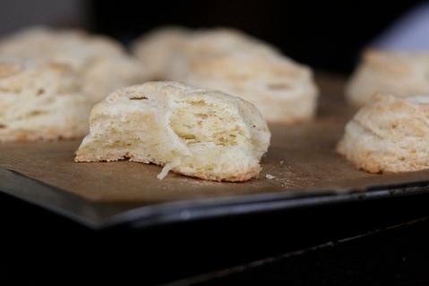 biscuitslast